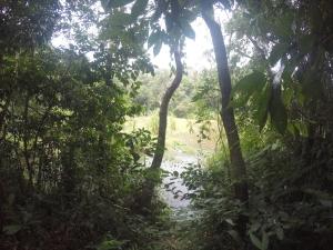 Pic taken while trekking around the lake