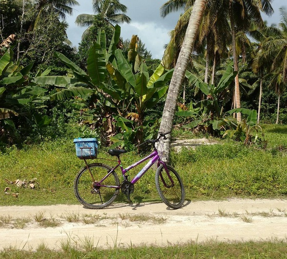la digue bicycle