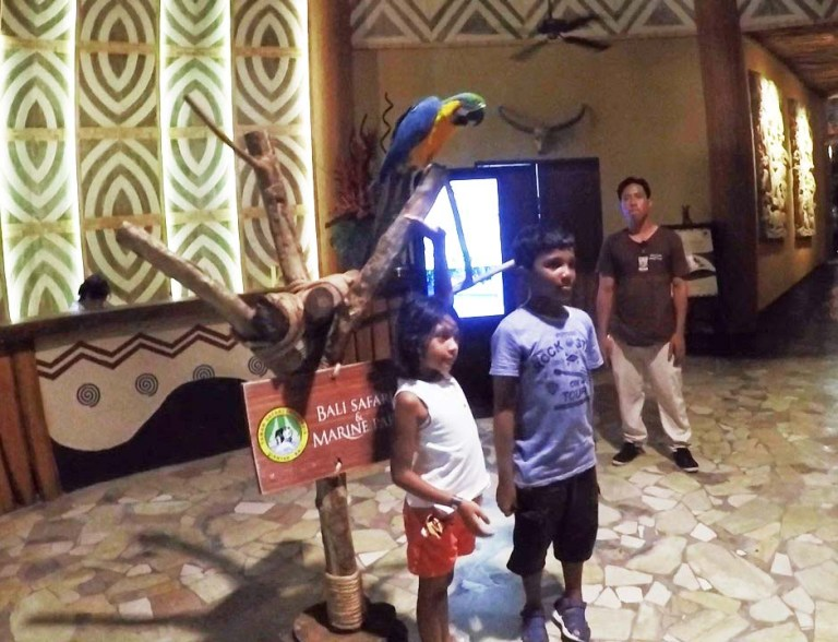 kids with macaw